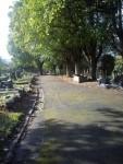 Radnor St Cemetery